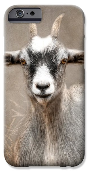 Goat Portrait IPhone 6s Case