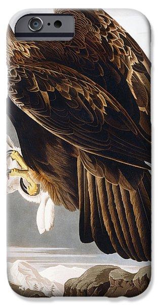 Golden Eagle IPhone 6s Case by John James Audubon