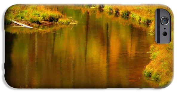 IPhone 6s Case featuring the photograph Golden Reflections by Karen Shackles