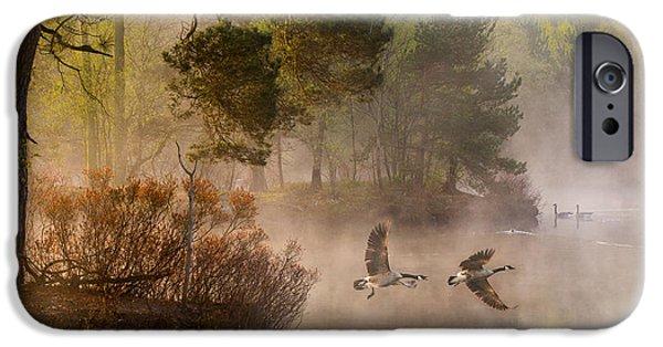 Geese iPhone 6s Case - Goose Fight by Anton Van Dongen