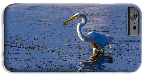 Sandpiper iPhone 6s Case - Gotcha by Marvin Spates
