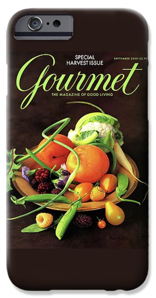 Gourmet Cover Featuring A Variety Of Fruit IPhone 6s Case