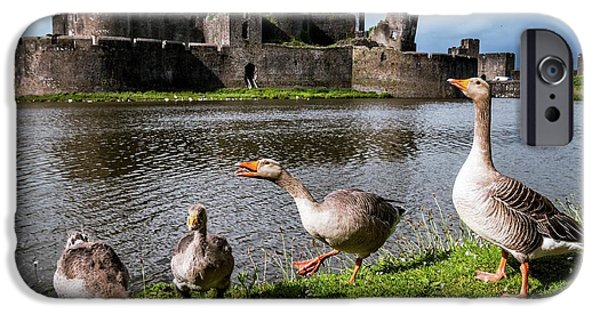 Gosling iPhone 6s Case - Greylag Geese And Caerphilly Castle by Paul Williams