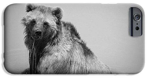 IPhone 6s Case featuring the photograph Grizzly Bear Bath Time by Karen Shackles