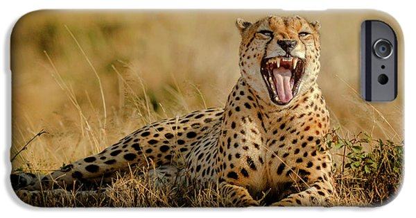 Cheetah iPhone 6s Case - Grumpy Morning by Husain Alfraid