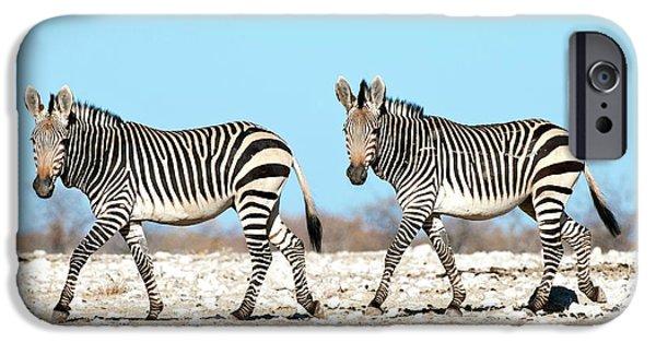 Hartmann's Mountain Zebra IPhone 6s Case by Tony Camacho