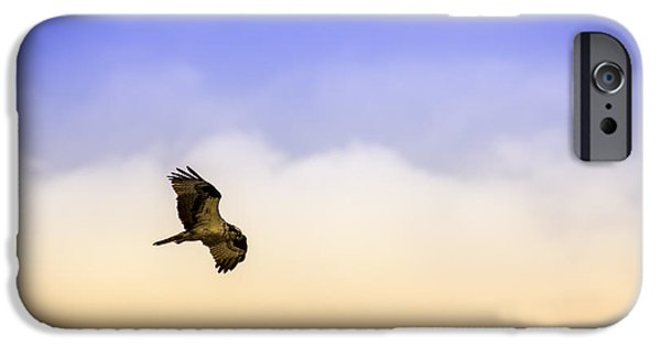Hawk Over Head IPhone 6s Case
