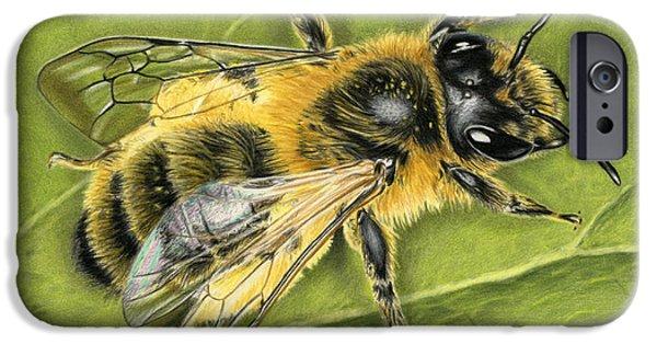 Color Pencil iPhone 6s Case - Honeybee On Leaf by Sarah Batalka