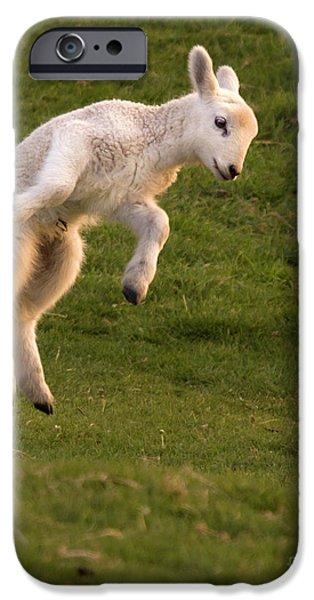 Sheep iPhone 6s Case - Hop Hop Hop by Angel Ciesniarska