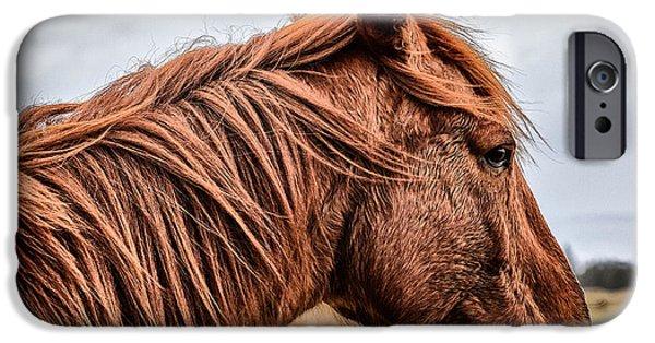Horsey Horsey IPhone 6s Case