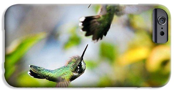 Hummingbirds Ensuing Battle IPhone 6s Case