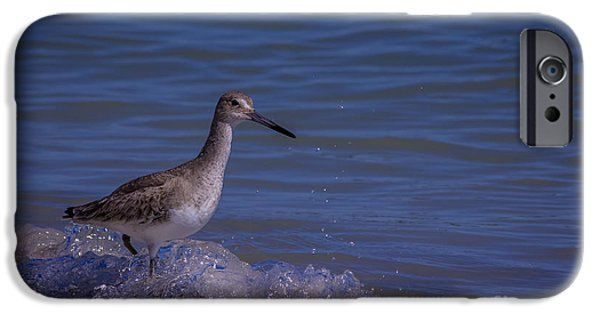 Sandpiper iPhone 6s Case - I Can Make It by Marvin Spates