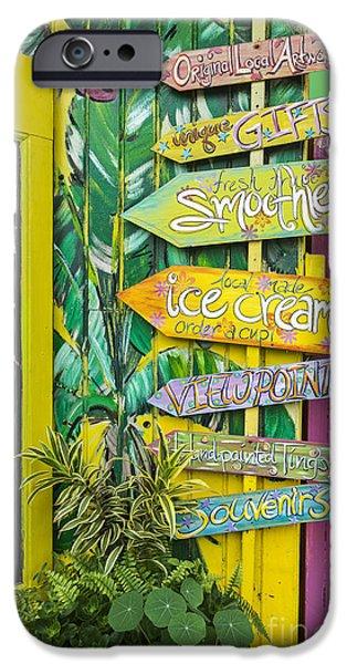 Smoothie iPhone 6s Case - Ice Cream by Sheldon Kralstein