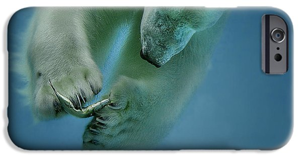 Polar Bear iPhone 6s Case - Icebaer by Peter Wagner