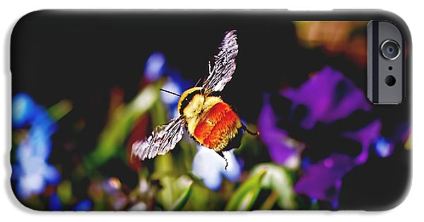 In Flight IPhone 6s Case