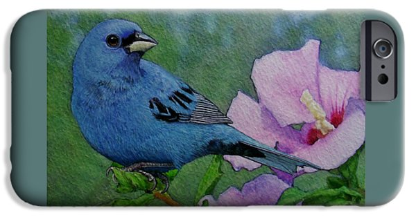 Indigo Bunting No 1 IPhone 6s Case