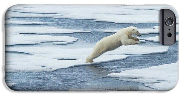 Polar Bear iPhone 6s Case - Jump! by Vadim Balakin