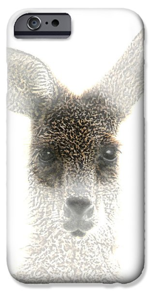 Kangaroo iPhone 6s Case - Kangaroo by Holly Kempe
