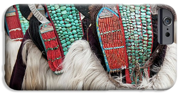 Yak iPhone 6s Case - Ladakh, India Married Ladakhi Women by Jaina Mishra