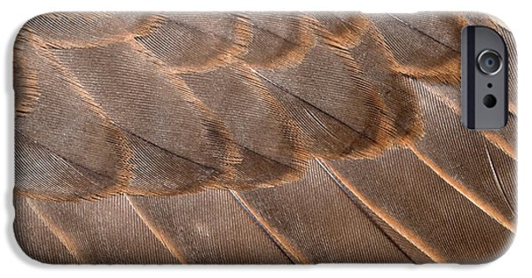 Lanner Falcon Wing Feathers Abstract IPhone 6s Case by Nigel Downer