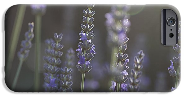 IPhone 6s Case featuring the photograph Lavender Flare. by Clare Bambers