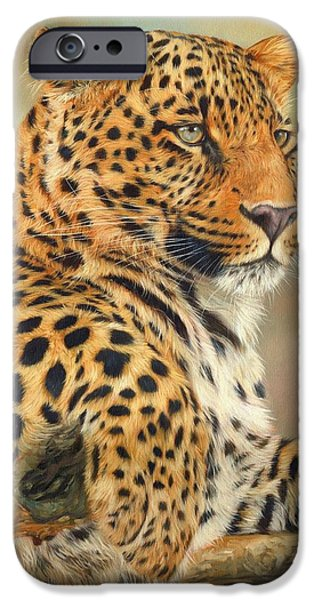 Leopard IPhone 6s Case by David Stribbling