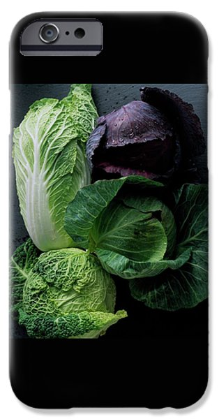 Lettuce IPhone 6s Case by Romulo Yanes