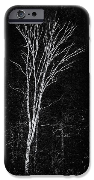 Life's A Birch No.2 IPhone 6s Case by Mark Myhaver