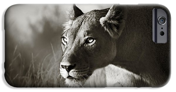 Nature iPhone 6s Case - Lioness Stalking by Johan Swanepoel