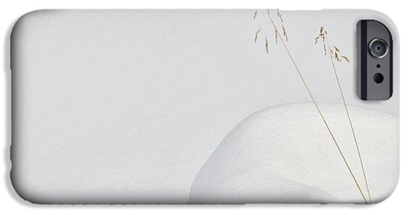 Simple iPhone 6s Case - Lonely In The Snow by Miquel Angel Art?s
