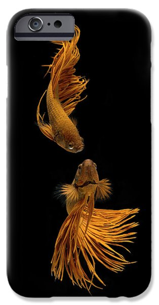 Aquarium iPhone 6s Case - Love Story Of The Golden Fish by Ganjar Rahayu