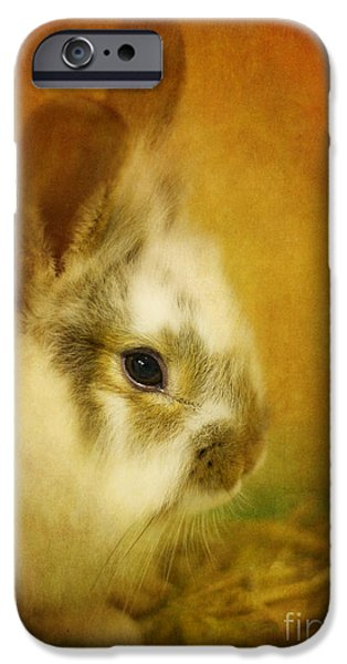 Memories Of Watership Down IPhone 6s Case