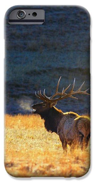 Animals iPhone 6s Case - Morning Breath by Kadek Susanto