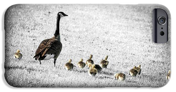 Gosling iPhone 6s Case - Mother Goose by Elena Elisseeva