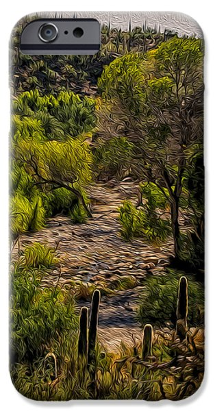 Mystic Wandering IPhone 6s Case by Mark Myhaver