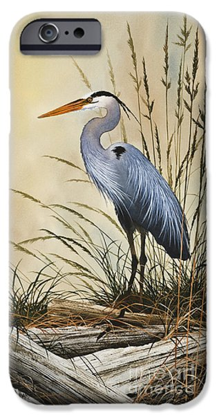 Natures Grace IPhone 6s Case by James Williamson