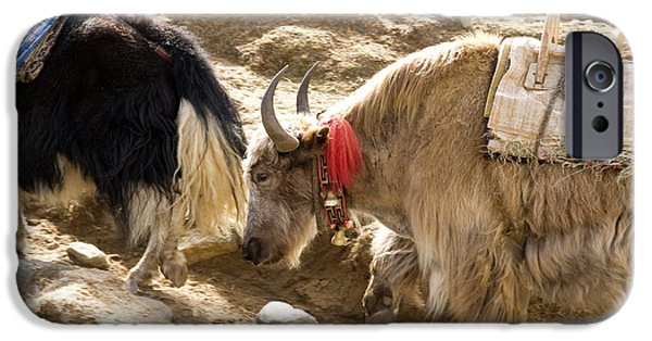 Nepal Yak Move Along The Everest Base IPhone 6s Case