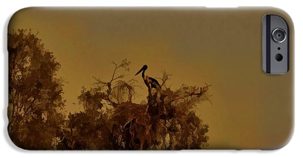 Nesting Jabiru  IPhone 6s Case by Douglas Barnard
