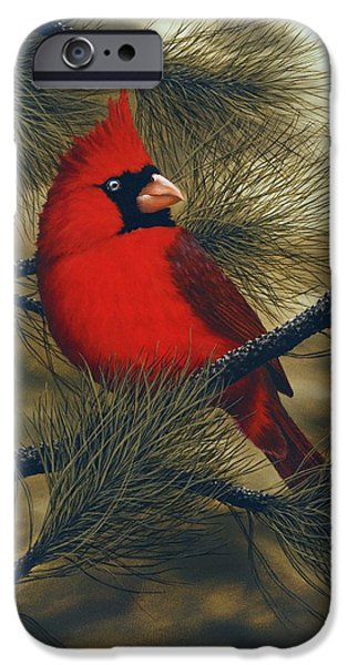 Northern Cardinal IPhone 6s Case by Rick Bainbridge