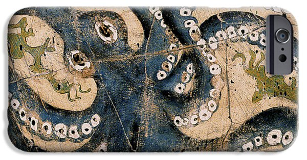 Octopus - Study No. 1 IPhone 6s Case