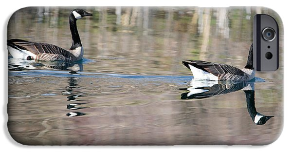On Golden Pond IPhone 6s Case by Mike Dawson