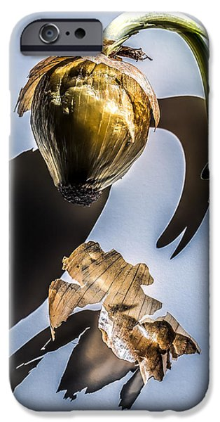 Onion Skin And Shadow IPhone 6s Case