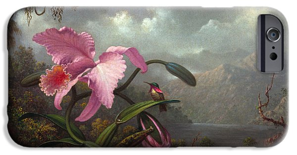 Orchid And Hummingbir IPhone 6s Case