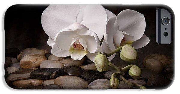 Nature iPhone 6s Case - Orchid - Sensuous Virtue by Tom Mc Nemar