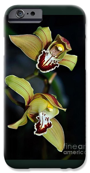 Orchids In The Evening IPhone 6s Case by Kaye Menner