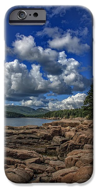 Otter iPhone 6s Case - Otter Point Afternoon by Rick Berk