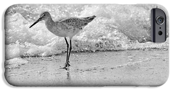 Sandpiper iPhone 6s Case - Pause by Betsy Knapp