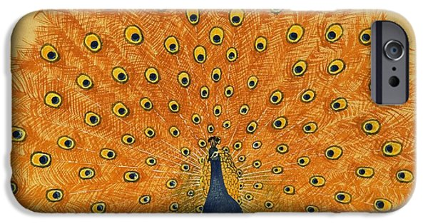Peacock IPhone 6s Case by English School
