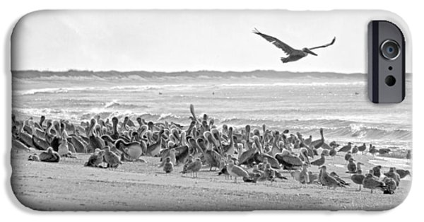 Pelican Convention  IPhone 6s Case by Betsy Knapp