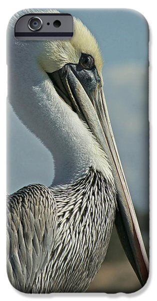 Pelican Profile 3 IPhone 6s Case by Ernie Echols